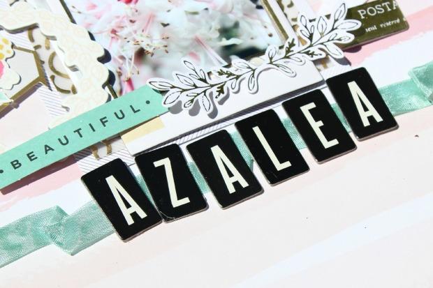 azalea3